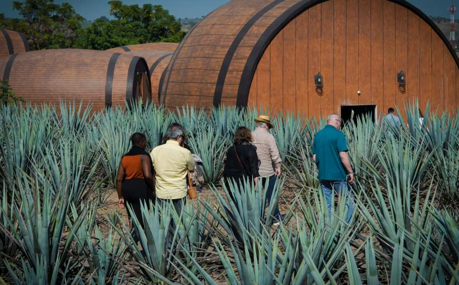 Viva Tequila Festival Honored at Taste Awards